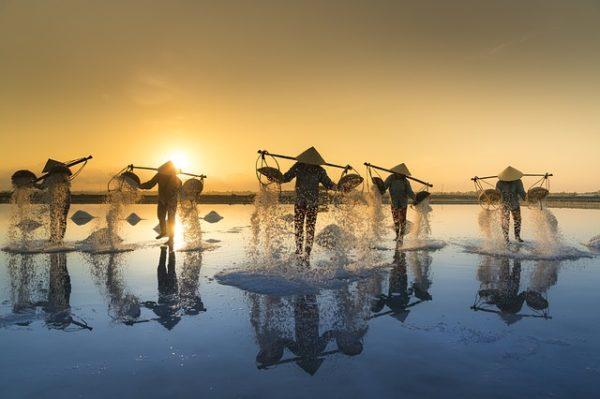 indonesia-seasalt